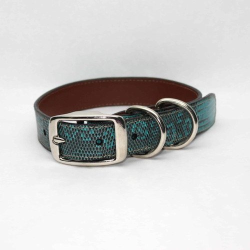 Genuine Lizard Dog Collar - Teal