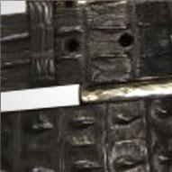 leatherhornbackcrocodile.png
