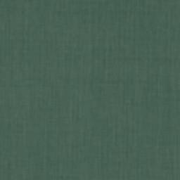 Grade A Forest Green -- 22D