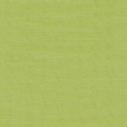 Grade A Lime -- 38D