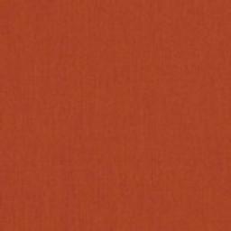 Canvas Rust 22 -- D - Canvas Rust