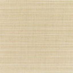 Dupione Sand 24 -- C - Dupione Sand