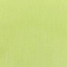 Canvas Parrot 22 -- C - Canvas Parrot