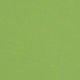 Canvas Ginkgo 22 -- D - Canvas Ginkgo