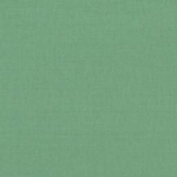 Canvas Basil 20 -- B - Canvas Basil