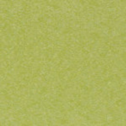 Lime (+$40.00) -- LI