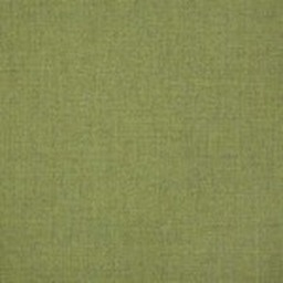 Sunbrella Cast Moss (+$48.00) -- 48109