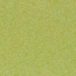 Lime (+$205.00) -- LI