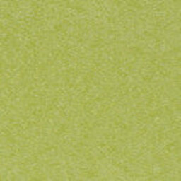Lime (+$25.00) -- LI