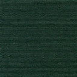 Grade A Sunbrella Forest Green -- 5446