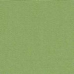 Ginkgo-- 54011