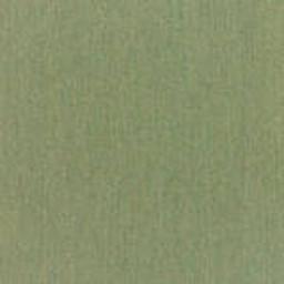 Grade B Sunbrella Fern (+$136.00) -- FRN-5487