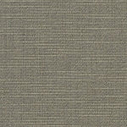 Sunbrella Silica Stone -- 4861