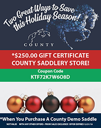holiday-sale-store-promo3.jpg