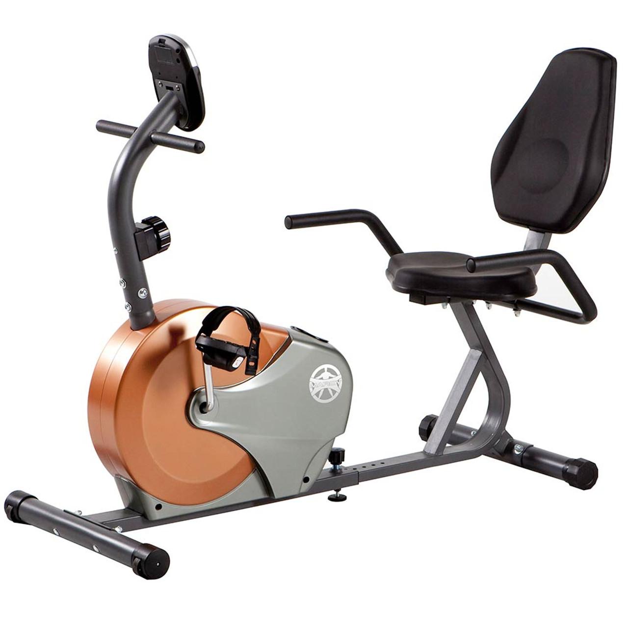 4a7b12be7ae Recumbent Exercise Bike