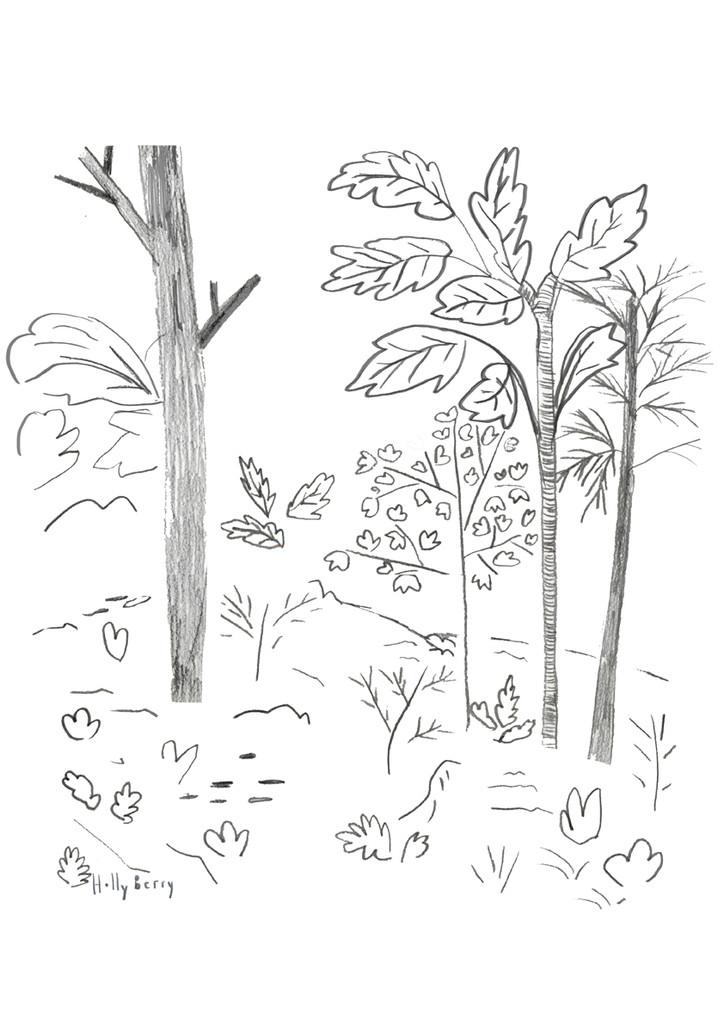 Woodland Hill Print