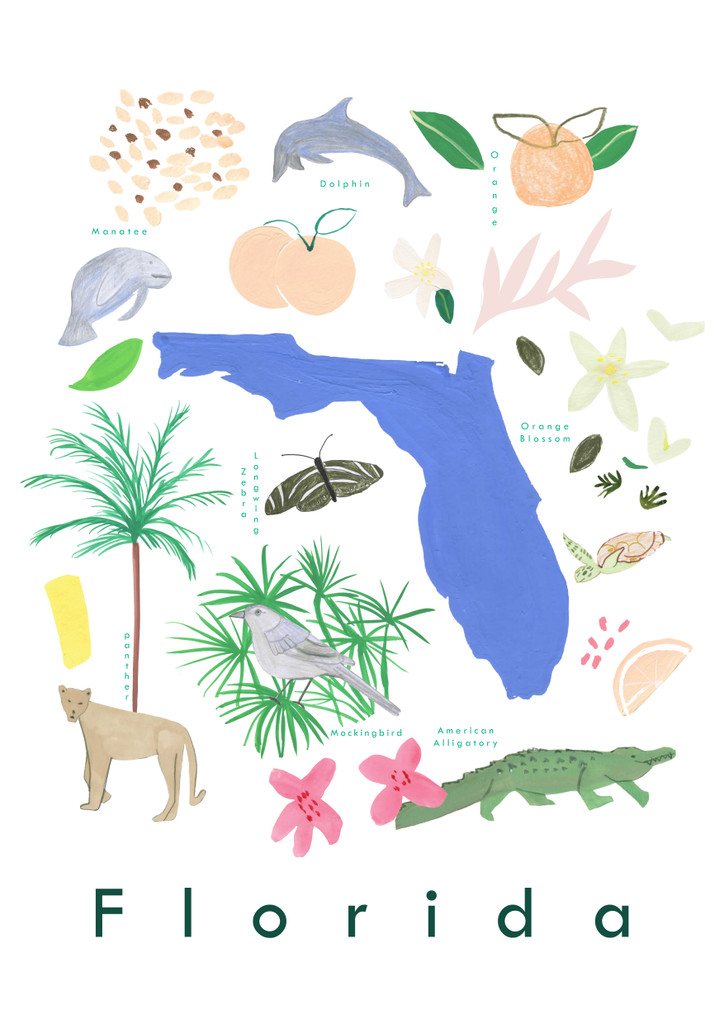 Illustrated Florida State Symbols Art Print unframed. Create with original paintings and drawings.
