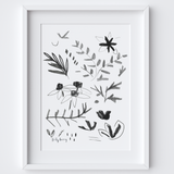 Sketching Botanical Studies Framed Print