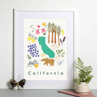 Illustrated painted State Symbols of California, CA, USA Framed print