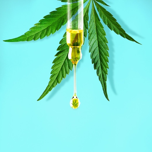 How CBD Oil Has Changed the Way We Look at Cannabis