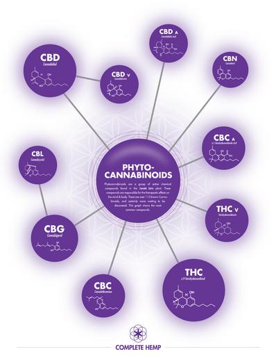 What are Phytocannabinoids?