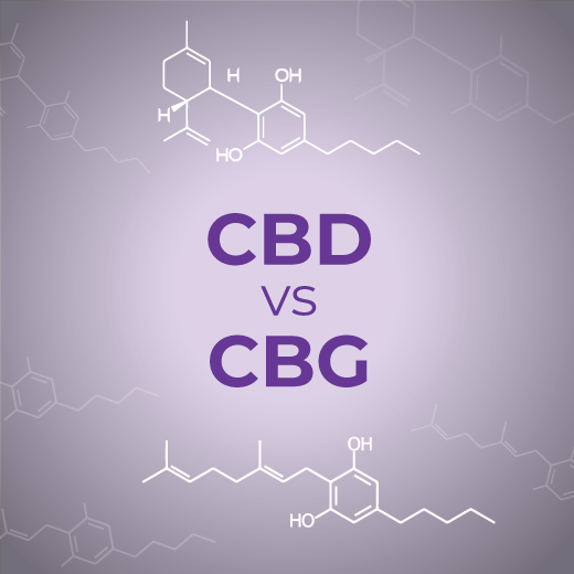 CBG vs. CBD: What You Need to Know