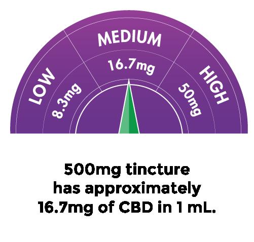 dose-meter-med.png