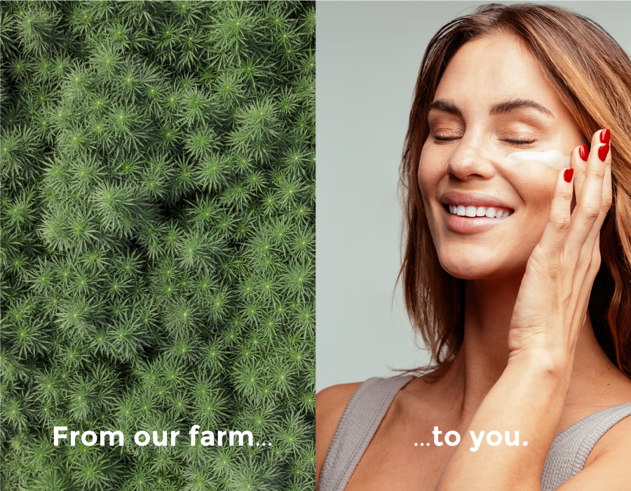 from-farm-to-you.png