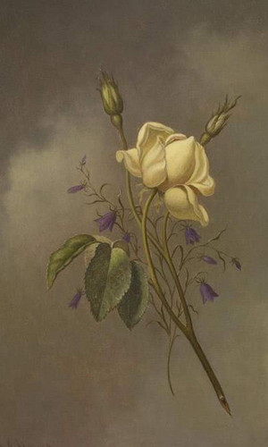 A Yellow Rose Against A Cloudy Sky By Martin Johnson Heade