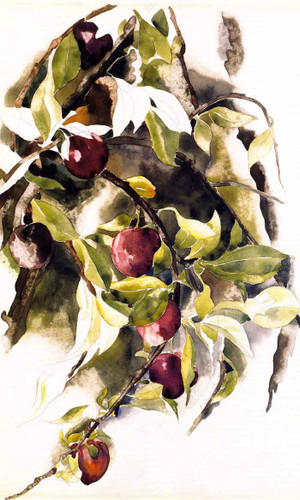 Plums By Charles Demuth By Charles Demuth