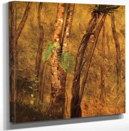 Plant Study Jamaica West Indies By Frederic Edwin Church Art Reproduction