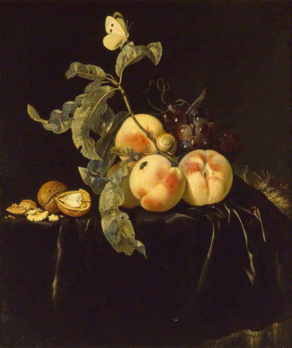 Still Life Of Fruit1 By Willem Van Aelst By Willem Van Aelst