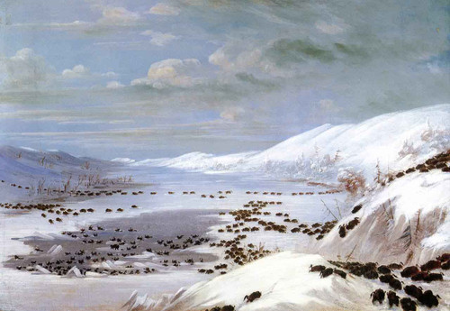 A Snow Landscape With Buffalo By George Catlin