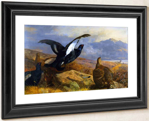 Black Grouse In A Highland Landscape With Red Deer In The Background By Archibald Thorburn