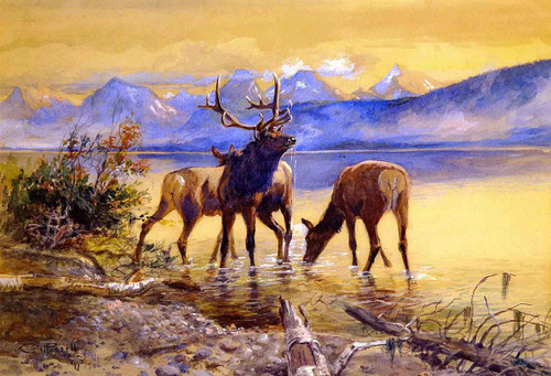 Elk In Lake Mcdonald By Charles Marion Russell