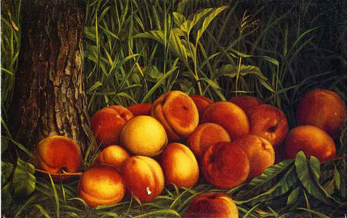 Peaches By Levi Wells Prentice By Levi Wells Prentice