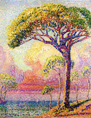 A Pine Tree By Henri Edmond Cross By Henri Edmond Cross
