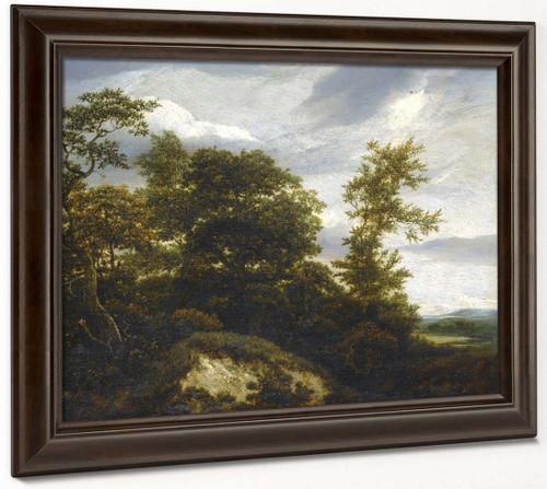A Wooded Dune Landscape By Jacob Van Ruisdael