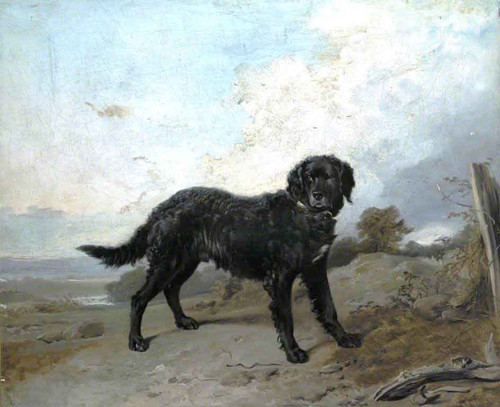Black Retriever In A Landscape By Richard Ansdell