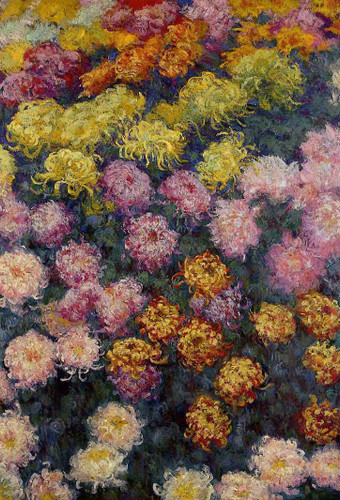 Bed Of Chrysanthemums By Claude Oscar Monet