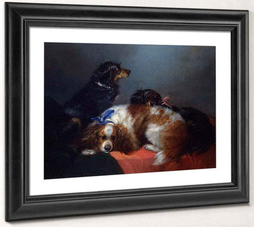 Two King Charles Spaniels And A Terrier By George Armfield