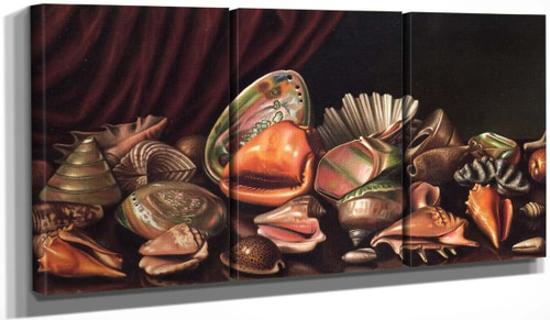 Still Life With Exotic Shells By Levi Wells Prentice By Levi Wells Prentice