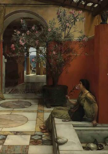 An Oleander By Sir Lawrence Alma Tadema