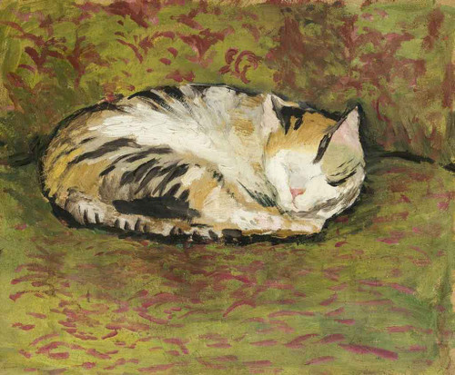 Cat By August Macke