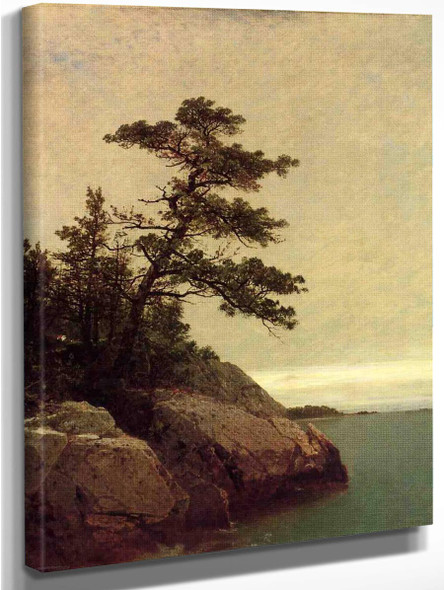 The Old Pine, Darien, Connecticut By John Frederick Kensett By John Frederick Kensett