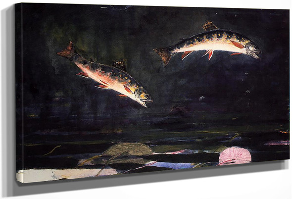 Leaping Trout By Winslow Homer