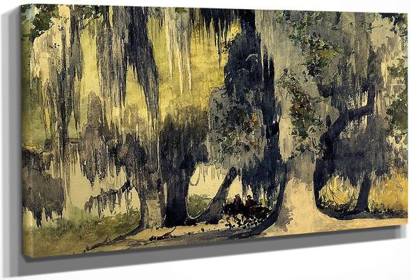 Live Oaks By Winslow Homer