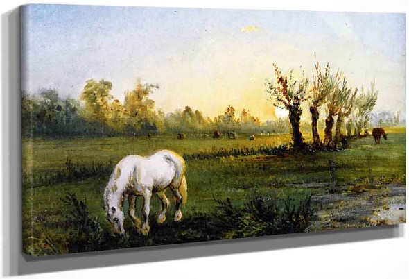 White Horse In A Meadow By Camille Pissarro