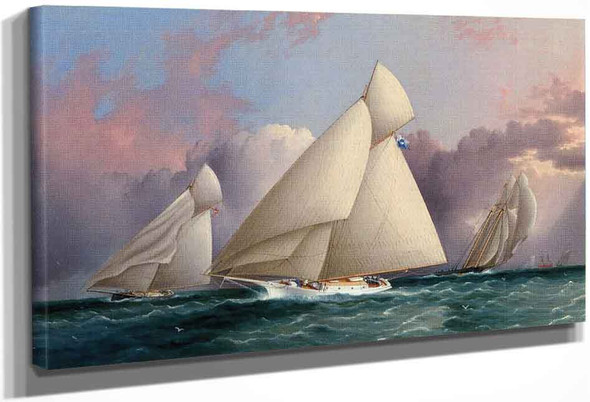 Yacht Sappho Beating To The Wind By James E. Buttersworth