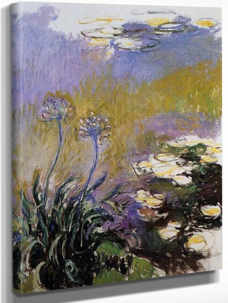 Agapanthus By Claude Oscar Monet